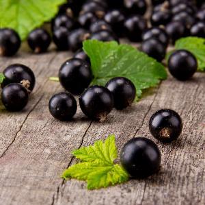 Marmolada z czarnych porzeczek: łatwy przepis
